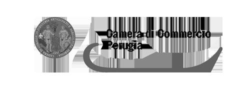 Camera Com