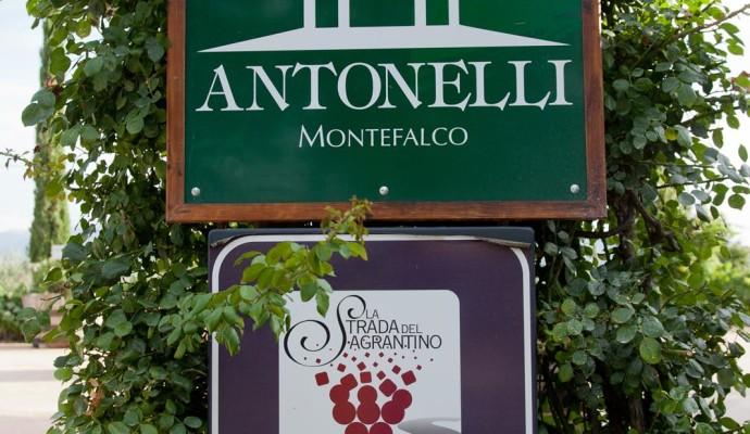 antonelli-002