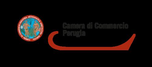 CameraCommercio